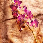 Flower - Orchid - Just Splendid Art Print