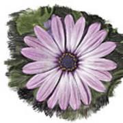 Flower Paint Art Print