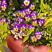 Flower - Pansy - Purple Posies  Art Print by Mike Savad