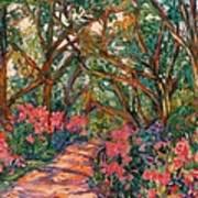 Flower Path Art Print