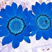 Flower Power 1427 Art Print