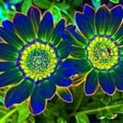 Flower Power 1446 Art Print
