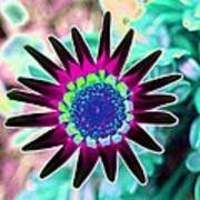 Flower Power 1448 Art Print
