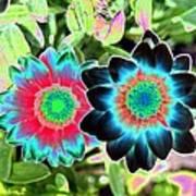 Flower Power 1449 Art Print