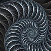 Flower Spiral Art Print