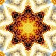 Flower Stars Art Print