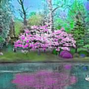 Flower Tree Reflections Art Print
