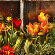 Flower - Tulip - Tulips In A Window Print by Mike Savad