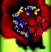 Flower With'in Art Print