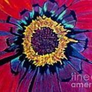 Flowerburst Art Print