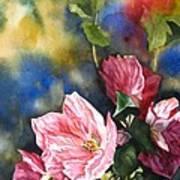 Flowering Maple Art Print