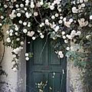Flowers On The Door Art Print