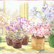 Flowers On The Windowsill Art Print by Julia Rowntree