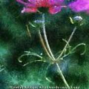 Flowers Whisper 02 Art Print