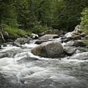 Flowing Stream In Vermont Art Print