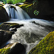 Flowing Stream Art Print