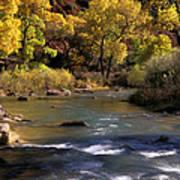 Flowing Through Zion National Park Art Print
