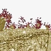 Flu Virus, Tem Art Print