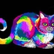 Fluffy Rainbow Cat 2 Art Print