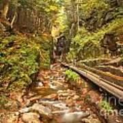 Flume Gorge Landscape Art Print
