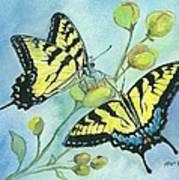 Flutterbys Art Print