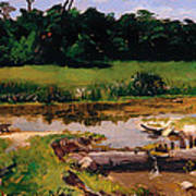 Fluvial Landscape Art Print