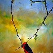Fly Catcher In Heart Shaped Branch Art Print