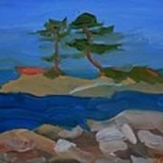 Fly Point Island Art Print