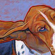 Flying Basset Hound Art Print