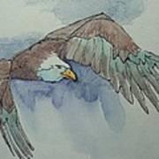Flying Free Art Print