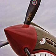 Flying Tiger P-40 Art Print