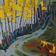 Fog Birches On The Edge Art Print