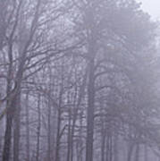 Fog In The Smoky Mountains Art Print