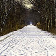 Fog On The Winter Macomb Orchard Trail Art Print