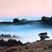 Fog Over The Bodega Coastline In California Art Print
