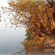 Foggy Autumn Riverbank Art Print
