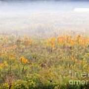 Foggy Country Autumn Morning Art Print