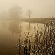 Foggy Day At Silver Lake Art Print