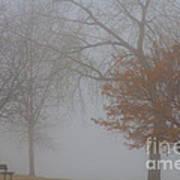 Foggy Lake View Art Print