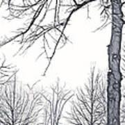 Foggy Morning Landscape - Fractalius 6 Art Print