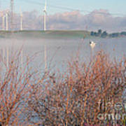 Foggy Morning On The Sacramento River Art Print