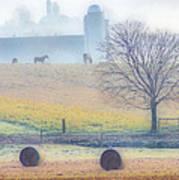 Foggy Morning Art Print by Thomas  MacPherson Jr