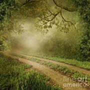 Foggy Road Photo Art Print by Boon Mee