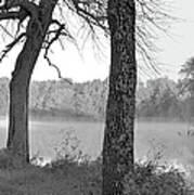 Foggy Waters Bw Art Print