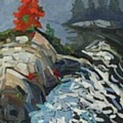 Foggy Whitefish Rapids Art Print