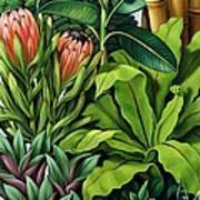Foliage IIi Art Print