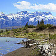 Following The Athabasca River Art Print