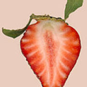 Food - Fruit - Slice Of Strawberry Art Print