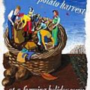 Food Production Lend A Hand With The Potato Harvest Art Print
