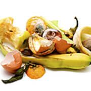 Food Waste Art Print